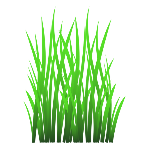 MAX AMOUNT OF grass